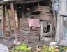 Собака в будке Кишинев