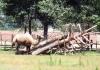 Зоопарк аквапарк Zoom, Cumiana