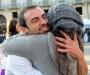 Free Hugs - «Бесплатные объятия», или Как подарить улыбку