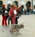 Free Hugs in Italy - Бесплатные объятия