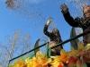 carnevale-torino-2011-karnaval-turin-46