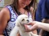 Конопатая девушка с щенком