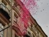 Залп из розовых листиков