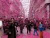 Розовая улица Гарибальди