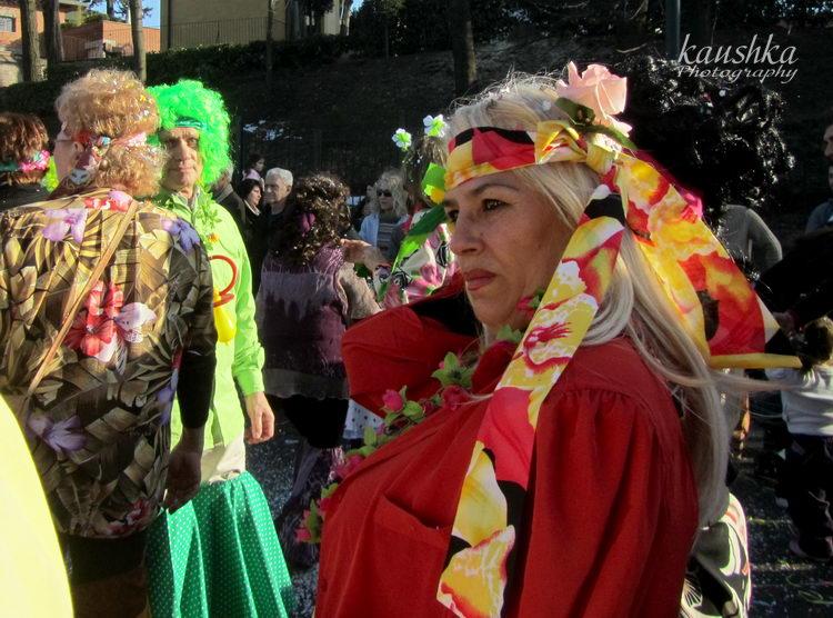 carnevale-torino-2012-17