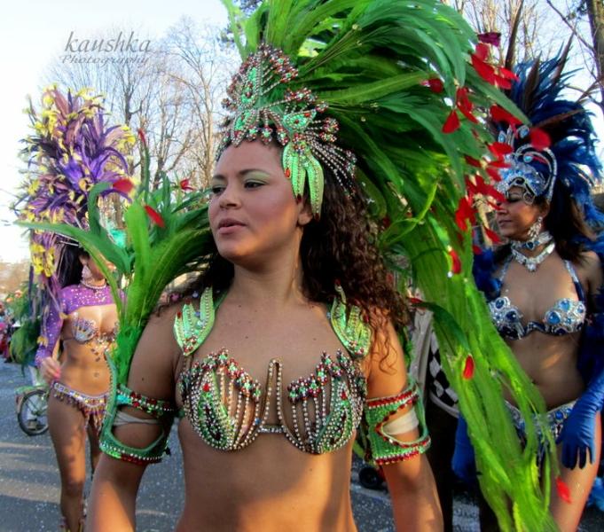 Общая информация о карнавалах Италии - Турин самостоятельно