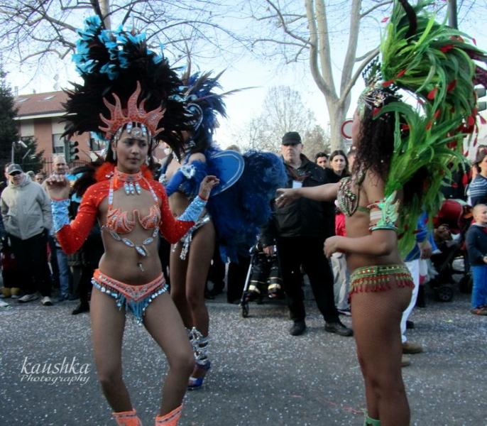 carnevale-torino-2012-34