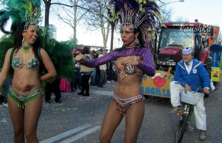 carnevale-torino-2012-36