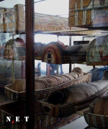 Египетский музей в Турине достопримечательности отзывы туристов