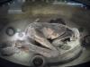 museo-egizio-mumia