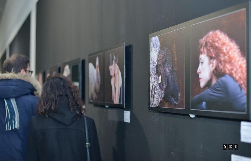 Paratissima Torino 2015 Ordine o Caos - Torino Esposizione