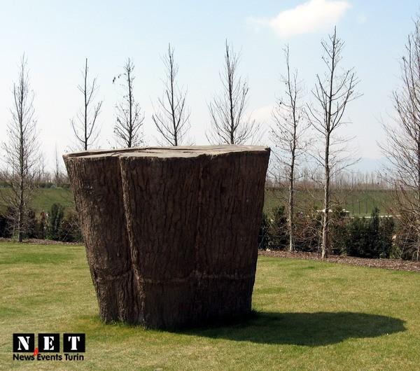 venaria-reale-albero-3