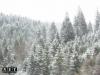 Снег в горах Румынии