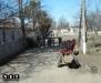 ЕС Румыния была вынуждена запретить лошадиные повозки в городах