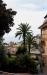 Пальмы Сан Ремо Imperia