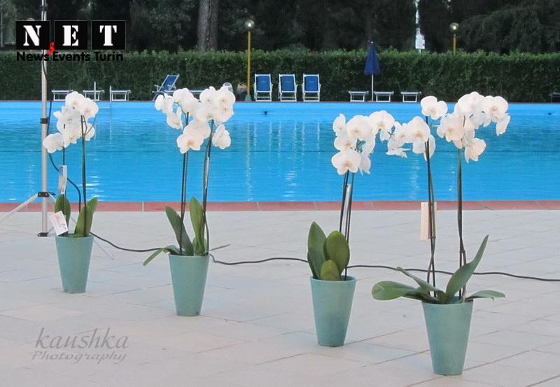 sfilata-di-moda-torino-fashion-summer-night-dreams-2012-2