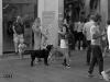 Torino agosto 2016 Street Photography