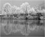fiume-po-inverno-3
