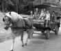 Повозки в парке Пелерина