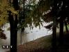 Alluvione Torino: il Po si prepara alla piena,