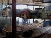 museo egizio mumii