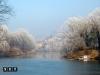 torino fiume po inverno bello nevico