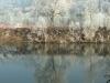 Река По в Турине зимой