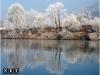Изображения парка на реке По
