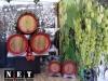 wine-of-moldova-vino-di-moldavia-21