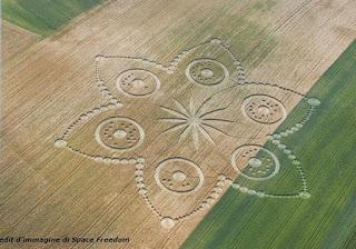 Круги на пшенице Турин Европа