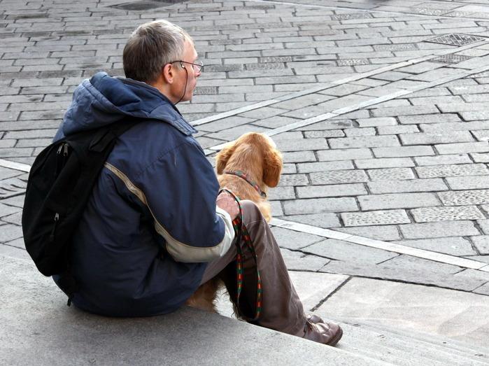 Турин очень много людей с собаками