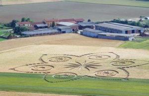 Круги на пшенице Турин Италия