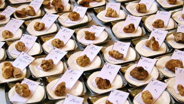 Пьемонт и рынок трюфелей в Италии Альба