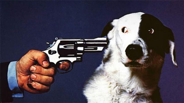 Защита прав животных в Италии