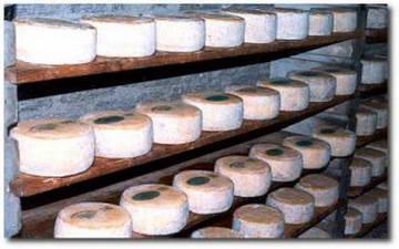 Разновидности сыров Пьемонта Турин Италия сыр