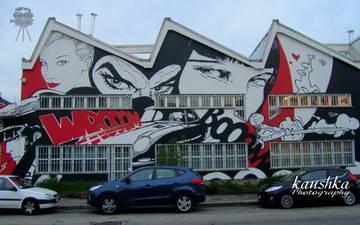 Граффити Италия Турин Европа