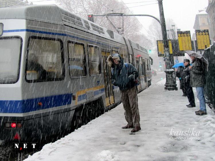 Итальянцев в Турине накрыл большой Снегопад в Турине