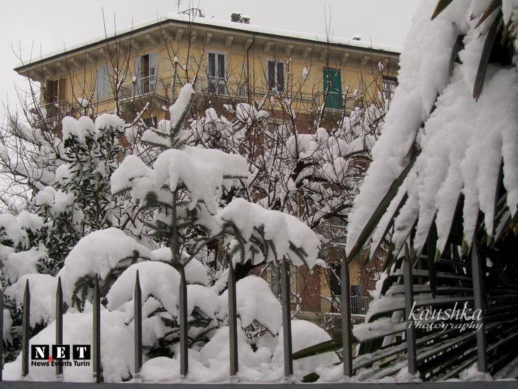В Турине сегодня снегопад