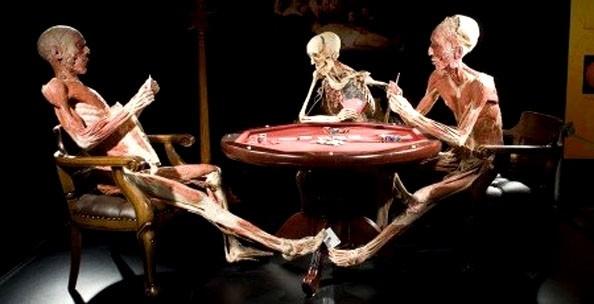 Три фигуры за столом выставка тела человека