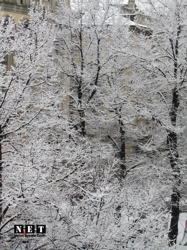 Крещенские морозы в Турине идет снег События Турина март 2013