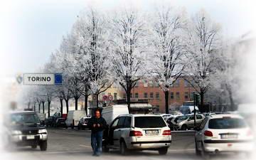 sneg v turine