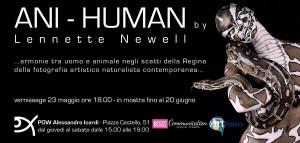 Гармония между человеком и животным