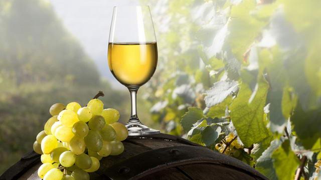 Белые вина Пьемонта - Пьемонт славится не только красными винами, но и белыми