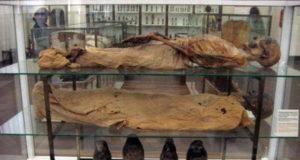 The Times - два музея Турина в TOP 50 лучших в мире