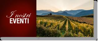 Дегустация вина в Турине