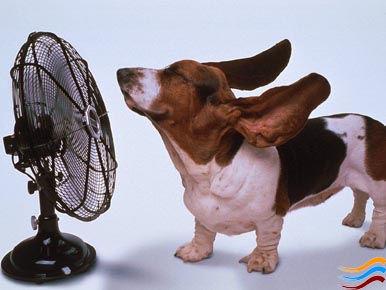 Все о погоде Турина