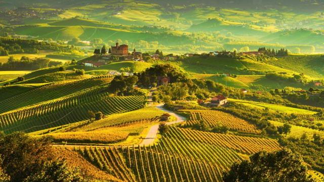 Лучшие итальянские вина - вино Пьемонта, Ланге и Монферрато