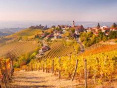 Итальянское вино - вина Пьемонта, Ланге и Монферрато