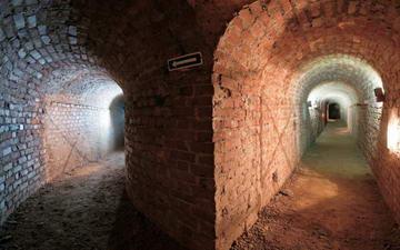 Музеи Турина, история, скидки