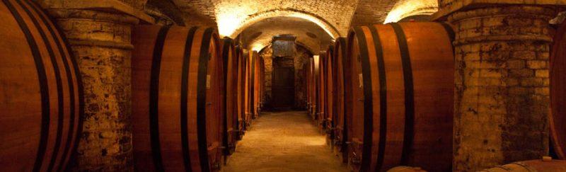 Вина региона Пьемонт Италия Земли итальянского вина